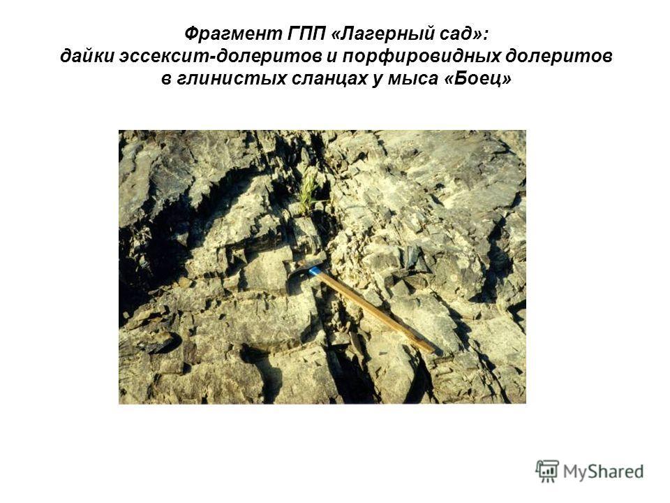 Фрагмент ГПП «Лагерный сад»: дайки эссексит-долеритов и порфировидных долеритов в глинистых сланцах у мыса «Боец»