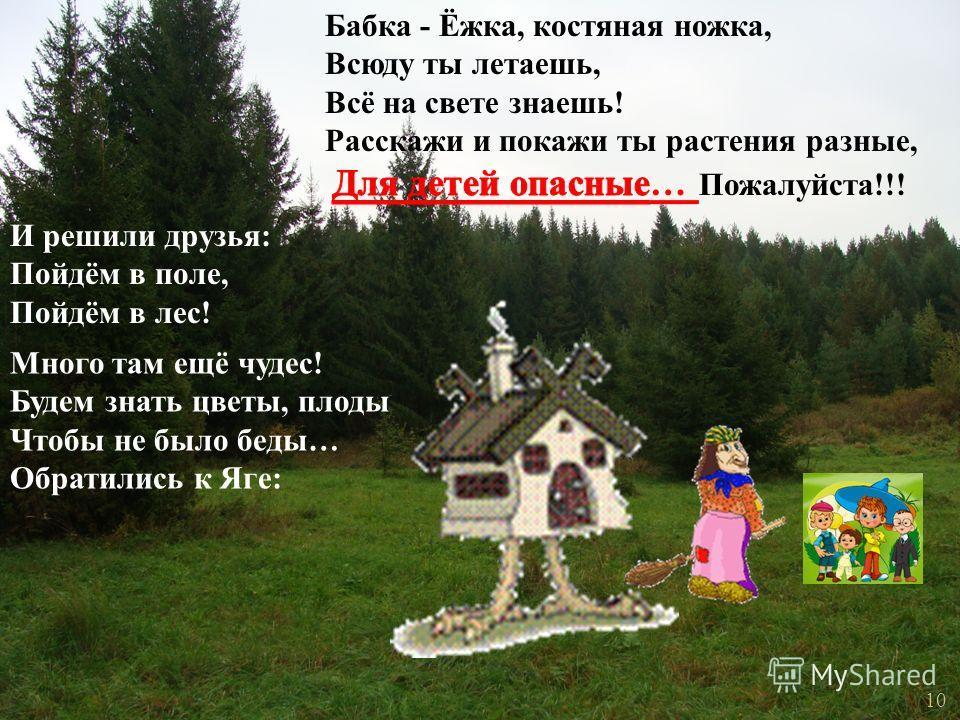 И решили друзья : Пойдём в поле, Пойдём в лес ! Много там ещё чудес ! Будем знать цветы, плоды Чтобы не было беды … Обратились к Яге : 10