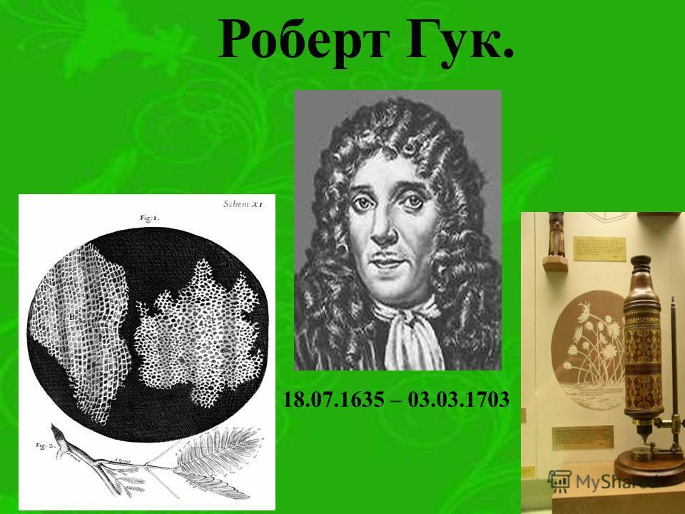 Роберт Гук. 18.07.1635 – 03.03.1703