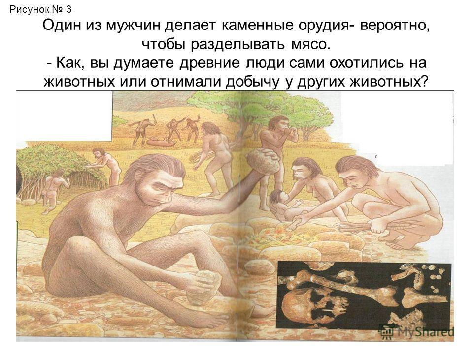 Один из мужчин делает каменные орудия- вероятно, чтобы разделывать мясо. - Как, вы думаете древние люди сами охотились на животных или отнимали добычу у других животных? Рисунок 3