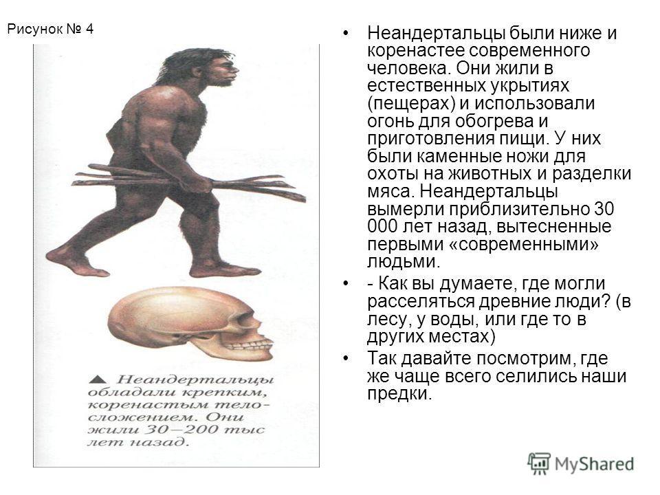 Неандертальцы были ниже и коренастее современного человека. Они жили в естественных укрытиях (пещерах) и использовали огонь для обогрева и приготовления пищи. У них были каменные ножи для охоты на животных и разделки мяса. Неандертальцы вымерли прибл