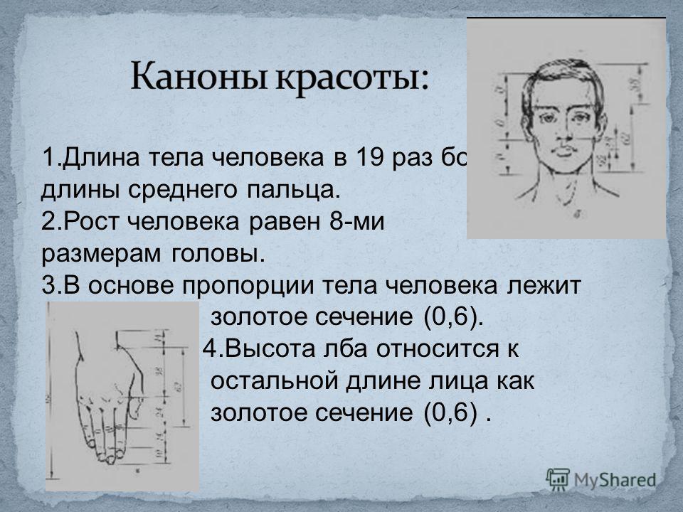 1.Длина тела человека в 19 раз больше длины среднего пальца. 2.Рост человека равен 8-ми размерам головы. 3.В основе пропорции тела человека лежит золотое сечение (0,6). 4.Высота лба относится к остальной длине лица как золотое сечение (0,6).