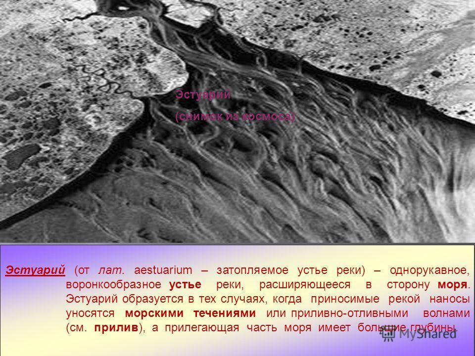 Дельта Миссисипи (снимок из космоса) Эстуарий (снимок из космоса) Эстуарий (от лат. aestuarium – затопляемое устье реки) – однорукавное, воронкообразное устье реки, расширяющееся в сторону моря. Эстуарий образуется в тех случаях, когда приносимые рек