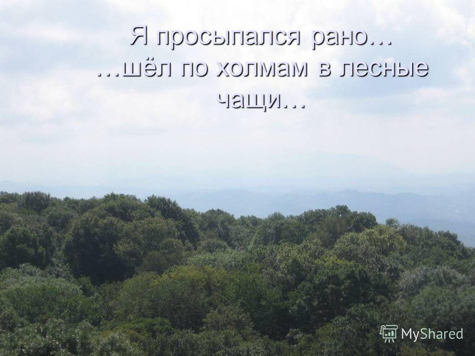Я просыпался рано… …шёл по холмам в лесные чащи…