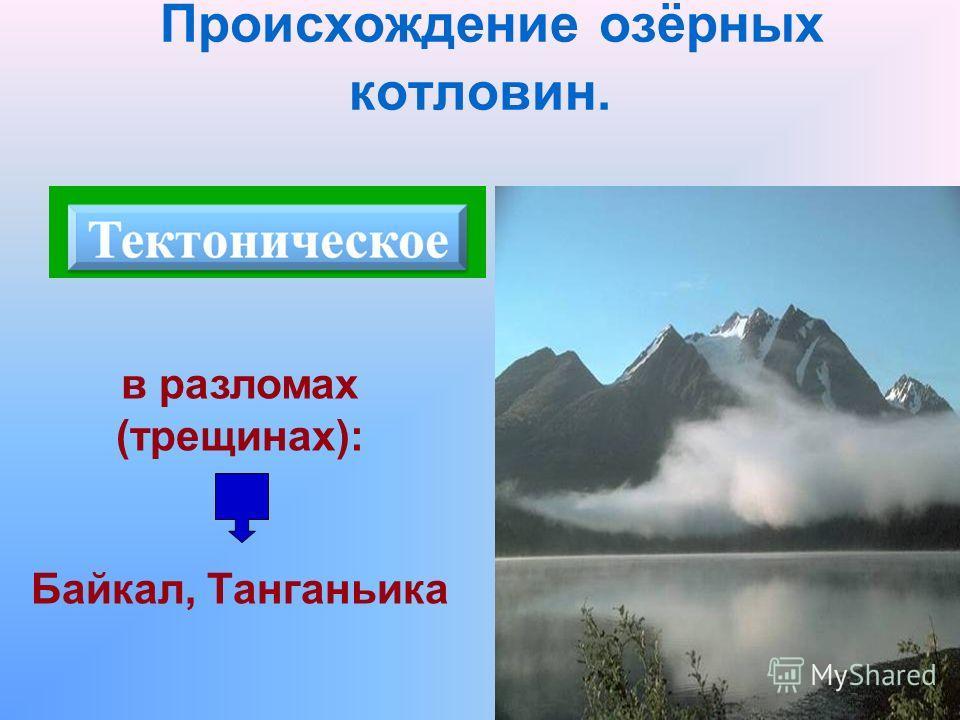 Происхождение озёрных котловин. в разломах (трещинах): Байкал, Танганьика