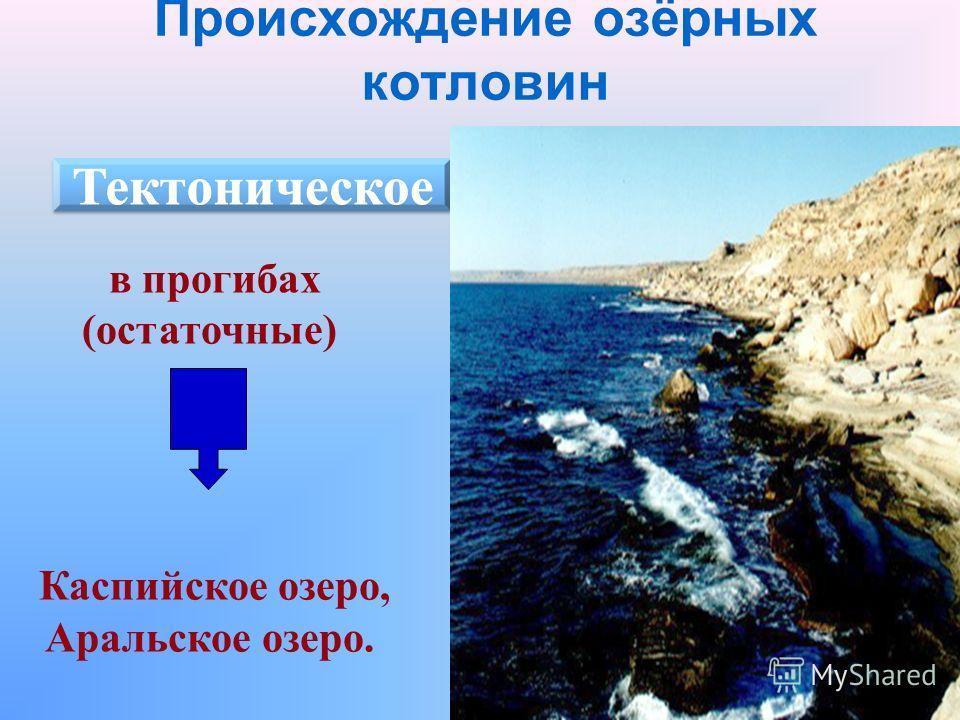 Происхождение озёрных котловин в прогибах (остаточные) Каспийское озеро, Аральское озеро.