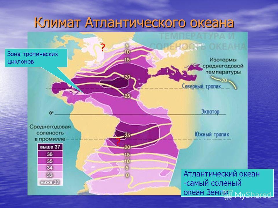 Климат Атлантического океана Атлантический океан -самый соленый океан Земли ? ? Зона тропических циклонов