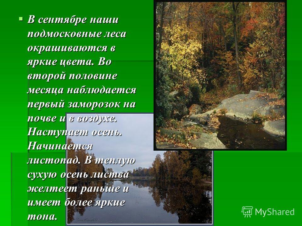 В сентябре наши подмосковные леса окрашиваются в яркие цвета. Во второй половине месяца наблюдается первый заморозок на почве и в воздухе. Наступает осень. Начинается листопад. В теплую сухую осень листва желтеет раньше и имеет более яркие тона. В се