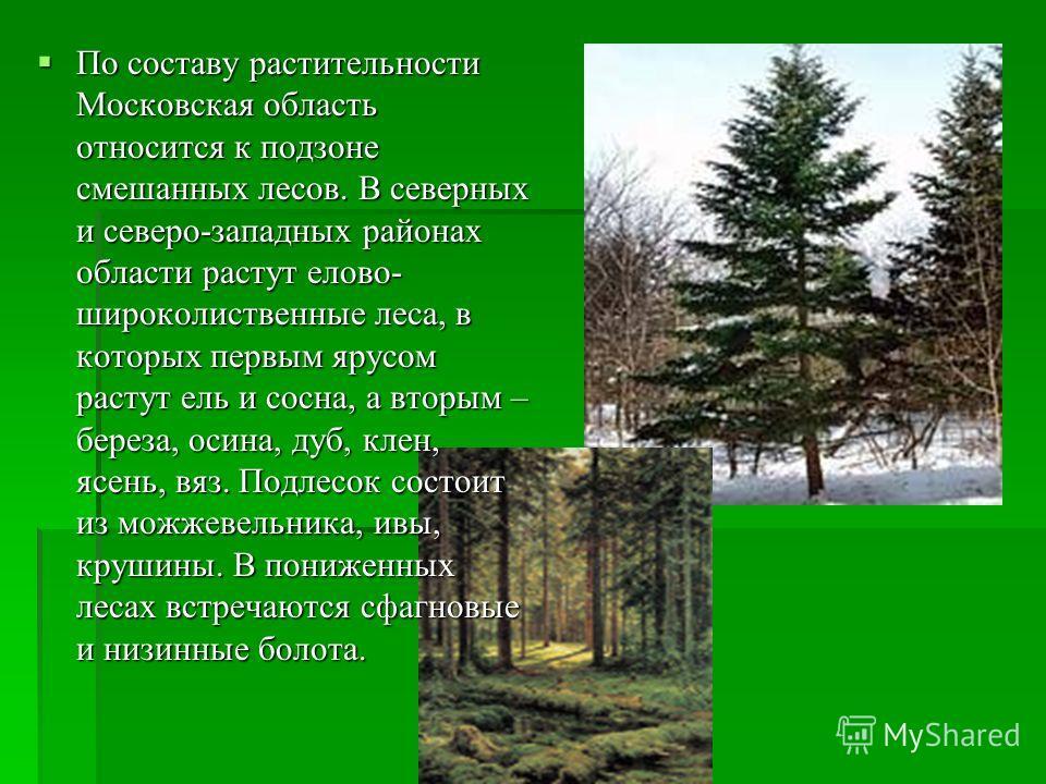 По составу растительности Московская область относится к подзоне смешанных лесов. В северных и северо-западных районах области растут елово- широколиственные леса, в которых первым ярусом растут ель и сосна, а вторым – береза, осина, дуб, клен, ясень