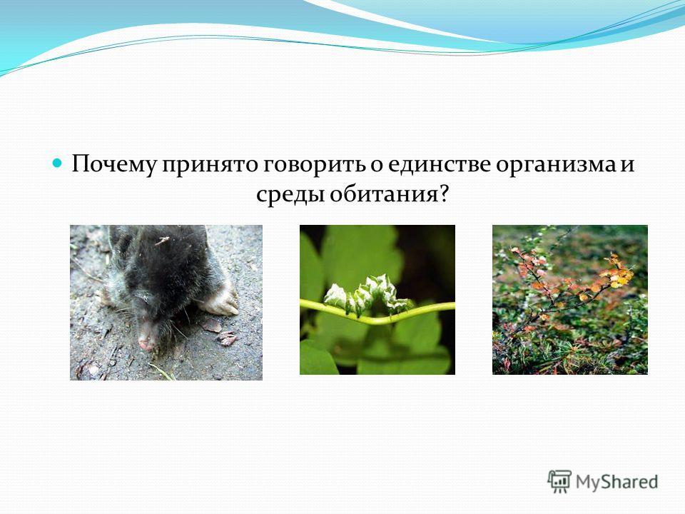 Почему принято говорить о единстве организма и среды обитания?