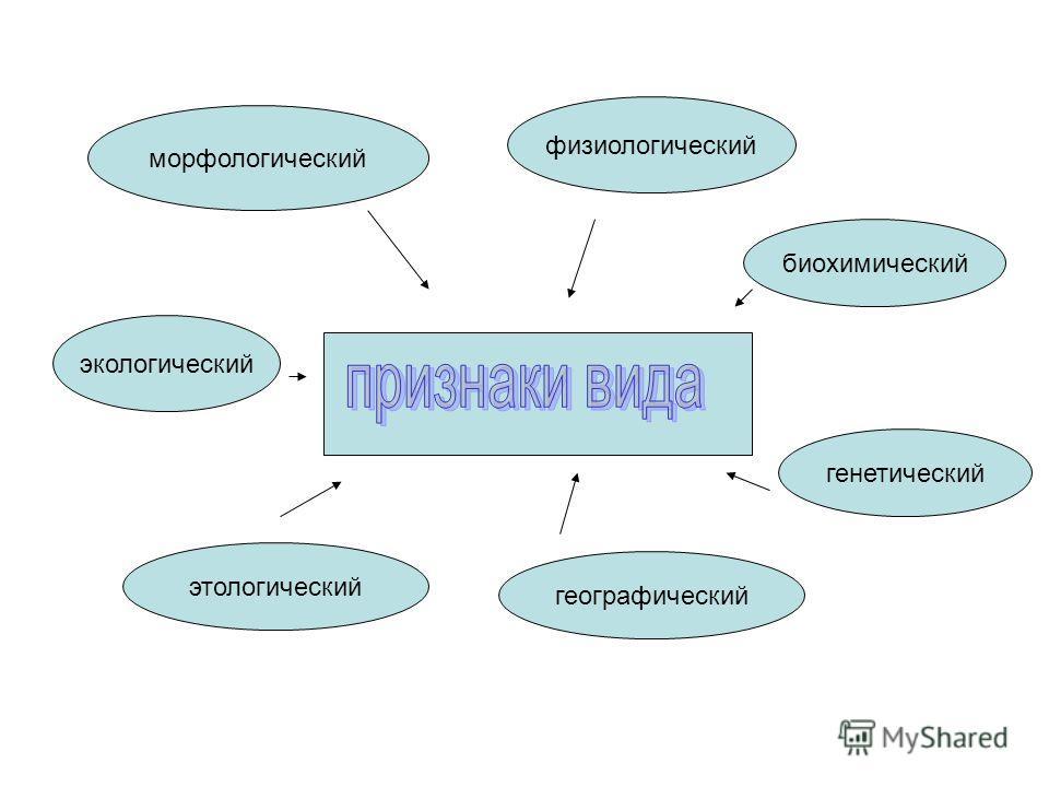 физиологический морфологический экологический биохимический этологический географический генетический