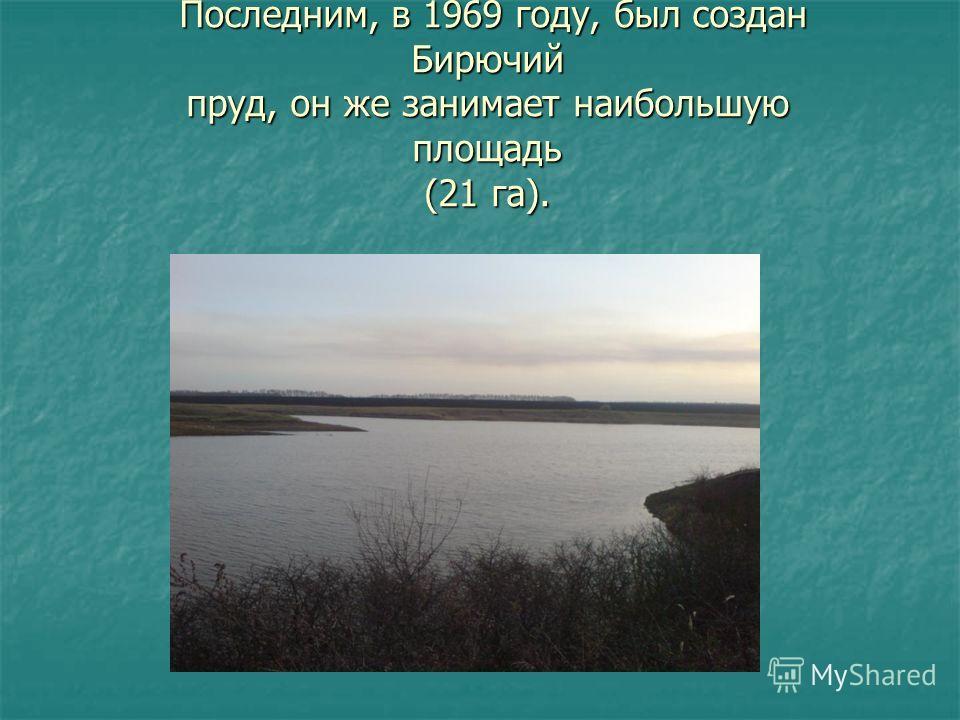 Последним, в 1969 году, создали Последним, в 1969 году, был создан Бирючий пруд, он же занимает наибольшую площадь (21 га).