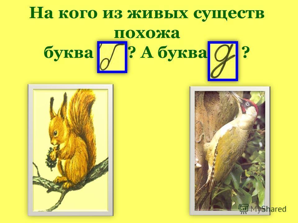 На кого из живых существ похожа буква ? А буква ?