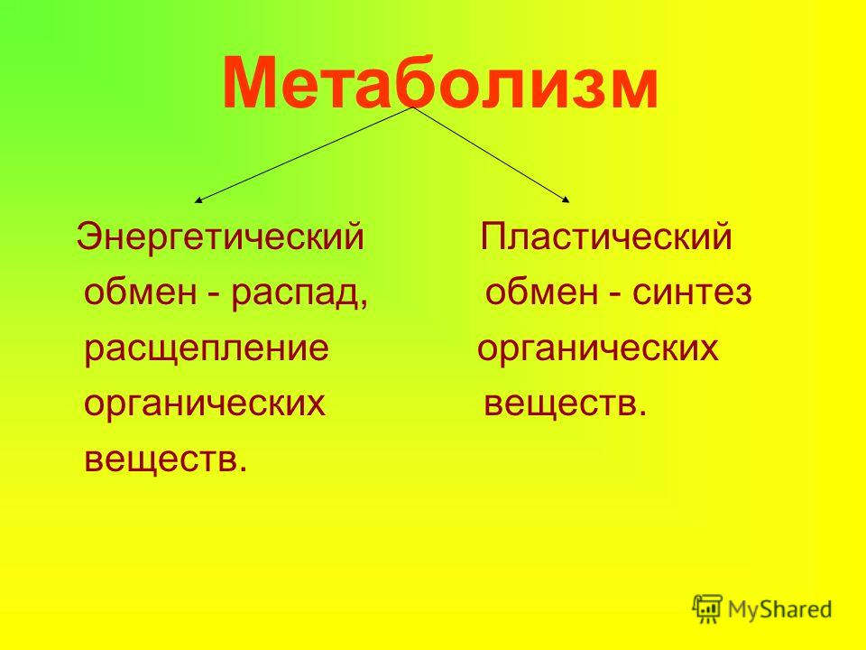 Метаболизм Энергетический Пластический обмен - распад, обмен - синтез расщепление органических органических веществ. веществ.