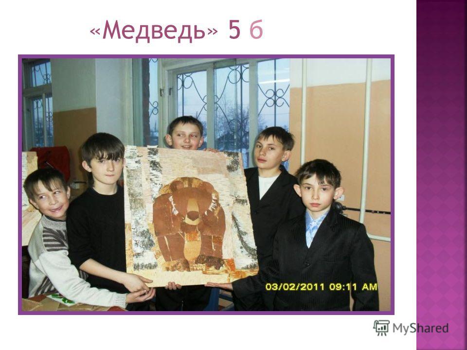 «Медведь» 5 б