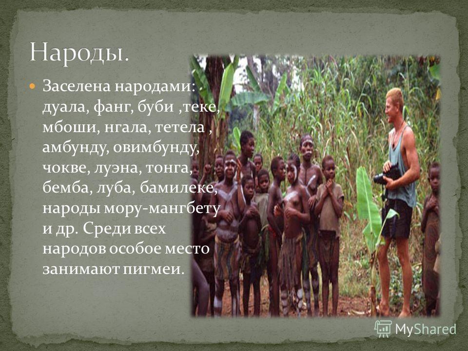 Заселена народами: дуала, фанг, буби,теке, мбоши, нгала, тетела, амбунду, овимбунду, чокве, луэна, тонга, бемба, луба, бамилеке, народы мору-мангбету и др. Среди всех народов особое место занимают пигмеи.