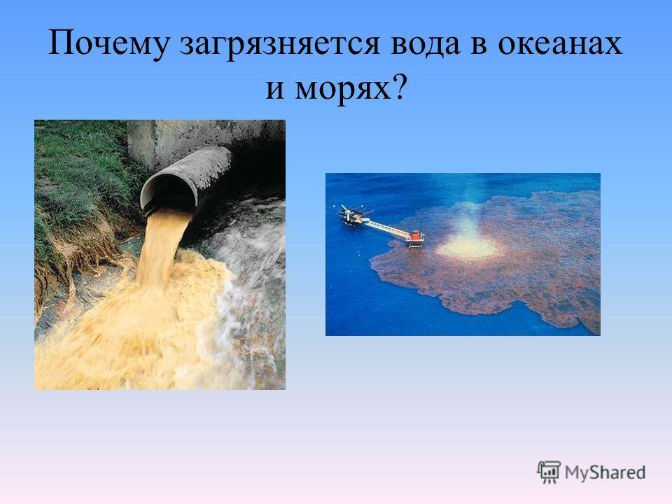 Почему загрязняется вода в океанах и морях?