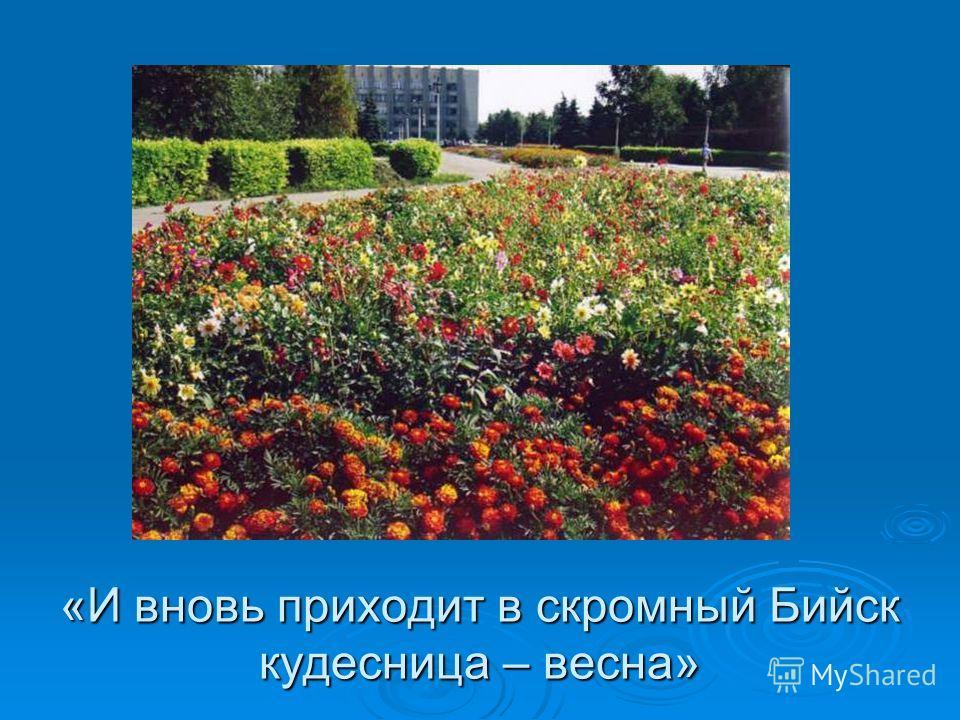 «И вновь приходит в скромный Бийск кудесница – весна»