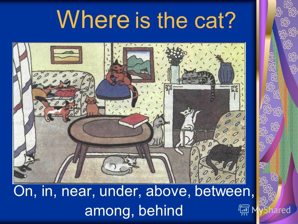 Where is the cat? On, in, near, under, above, between, among, behind