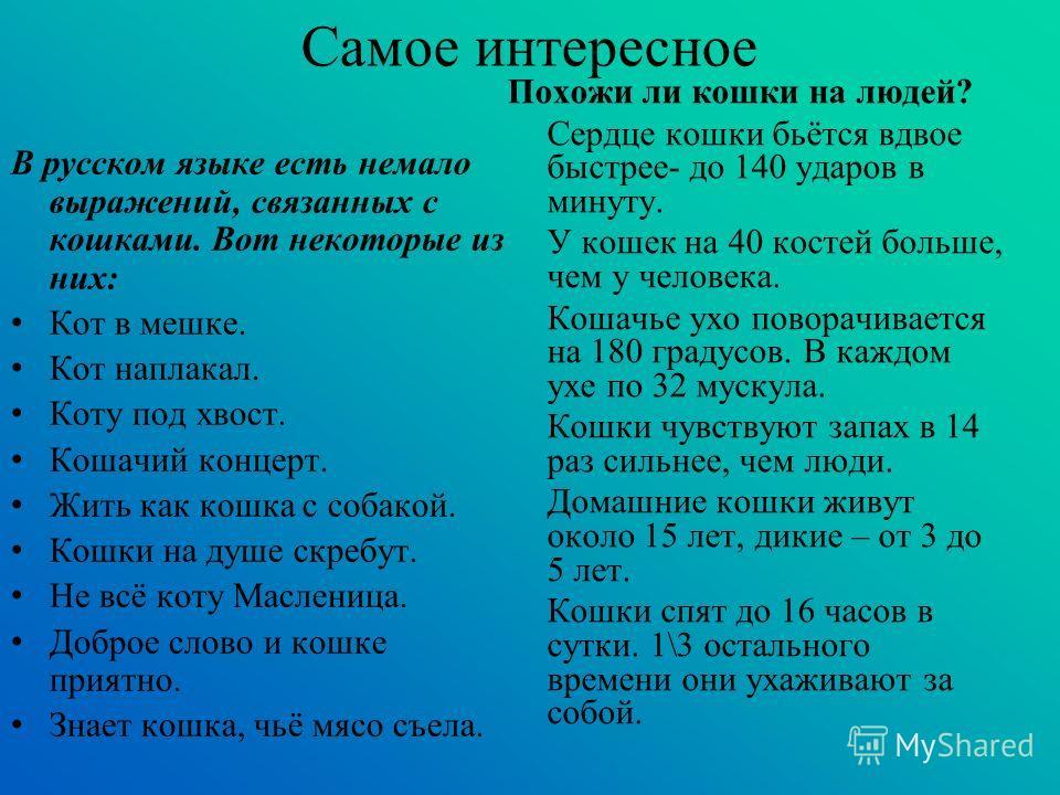 Самое интересное В русском языке есть немало выражений, связанных с кошками. Вот некоторые из них: Кот в мешке. Кот наплакал. Коту под хвост. Кошачий концерт. Жить как кошка с собакой. Кошки на душе скребут. Не всё коту Масленица. Доброе слово и кошк