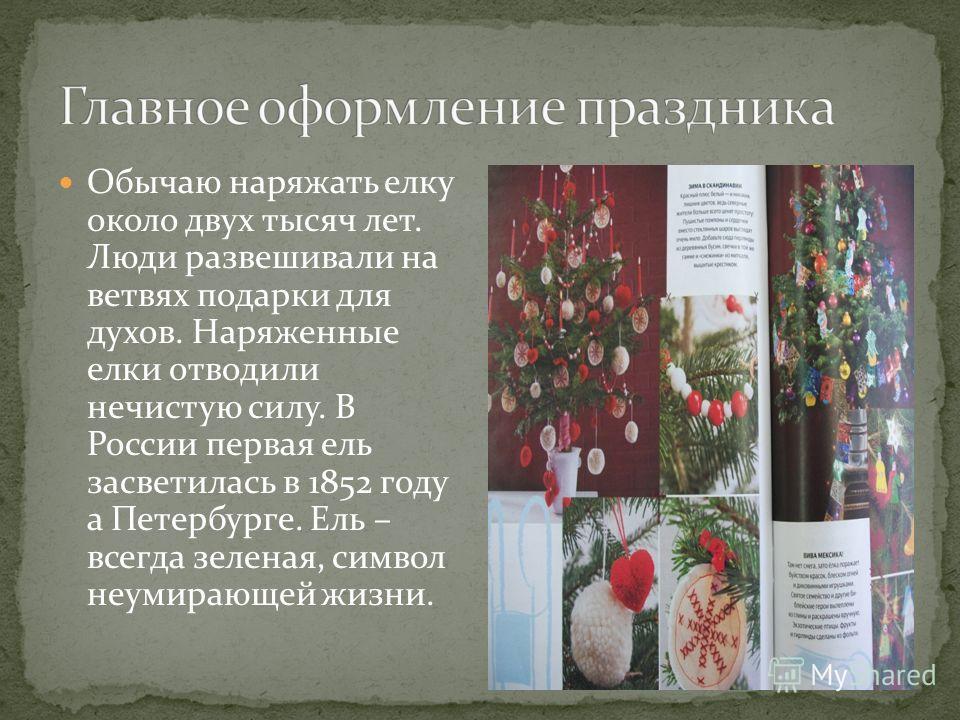 Обычаю наряжать елку около двух тысяч лет. Люди развешивали на ветвях подарки для духов. Наряженные елки отводили нечистую силу. В России первая ель засветилась в 1852 году а Петербурге. Ель – всегда зеленая, символ неумирающей жизни.