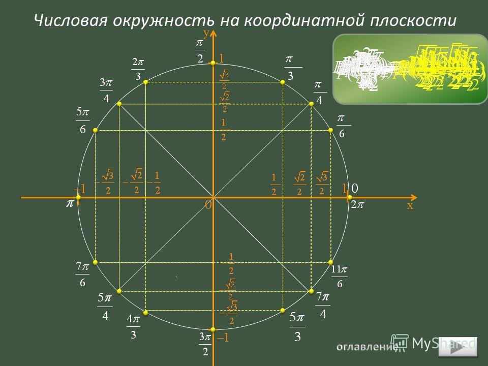 Числовая окружность на координатной плоскости х у