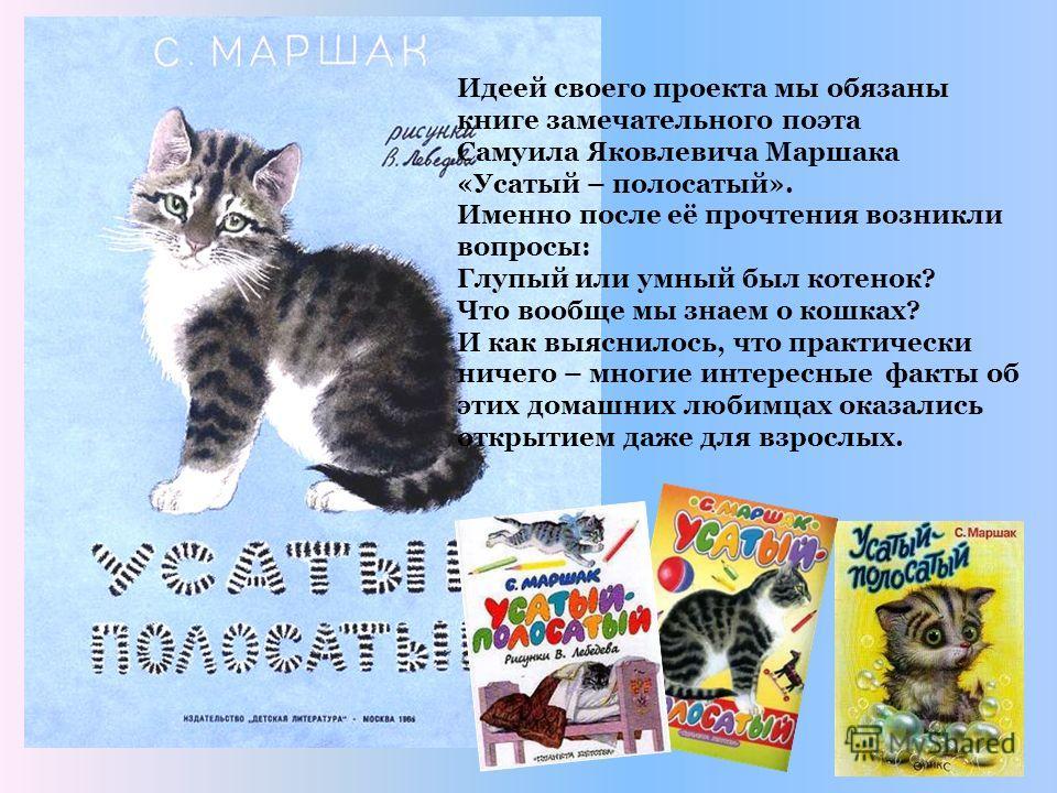 Идеей своего проекта мы обязаны книге замечательного поэта Самуила Яковлевича Маршака «Усатый – полосатый». Именно после её прочтения возникли вопросы: Глупый или умный был котенок? Что вообще мы знаем о кошках? И как выяснилось, что практически ниче