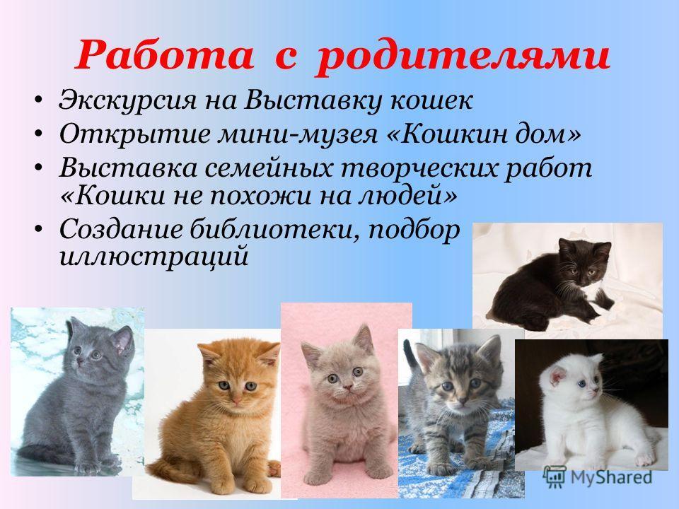 Работа с родителями Экскурсия на Выставку кошек Открытие мини-музея «Кошкин дом» Выставка семейных творческих работ «Кошки не похожи на людей» Создание библиотеки, подбор иллюстраций