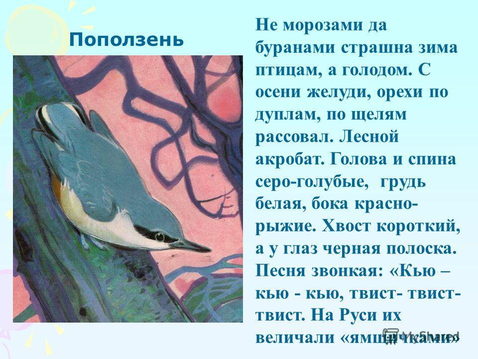 Различные приемы выполнения набросков В. А. Ватагин Известный художник, замечательный анималист – скульптор и рисовальщик, живописец и ученый – всю свою жизнь посвятил изучению и изображению животных. Каждая деталь строения, каждая чешуя рыбы, перо п