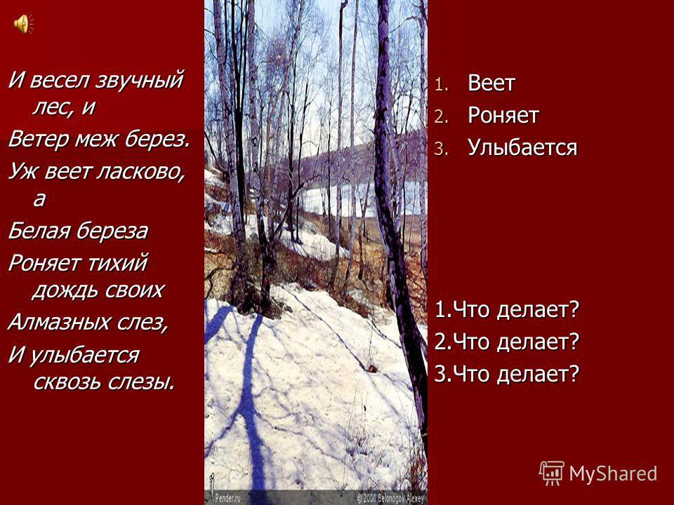 И весел звучный лес, и Ветер меж берез. Уж веет ласково, а Белая береза Роняет тихий дождь своих Алмазных слез, И улыбается сквозь слезы.