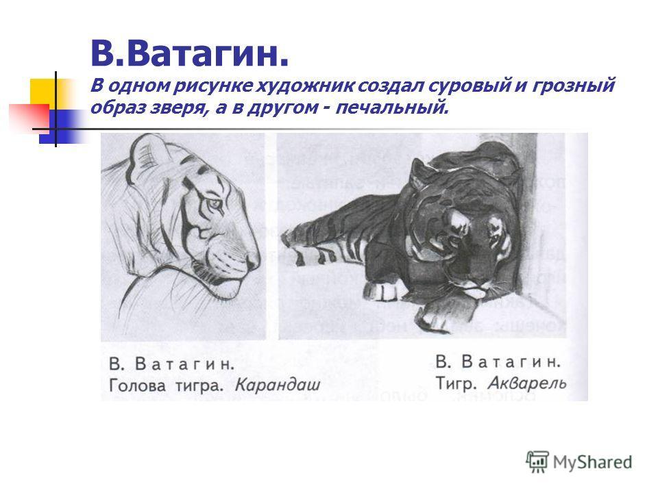 В.Ватагин. В одном рисунке художник создал суровый и грозный образ зверя, а в другом - печальный.