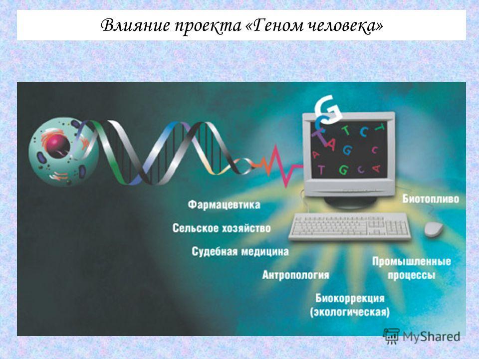 Влияние проекта «Геном человека»