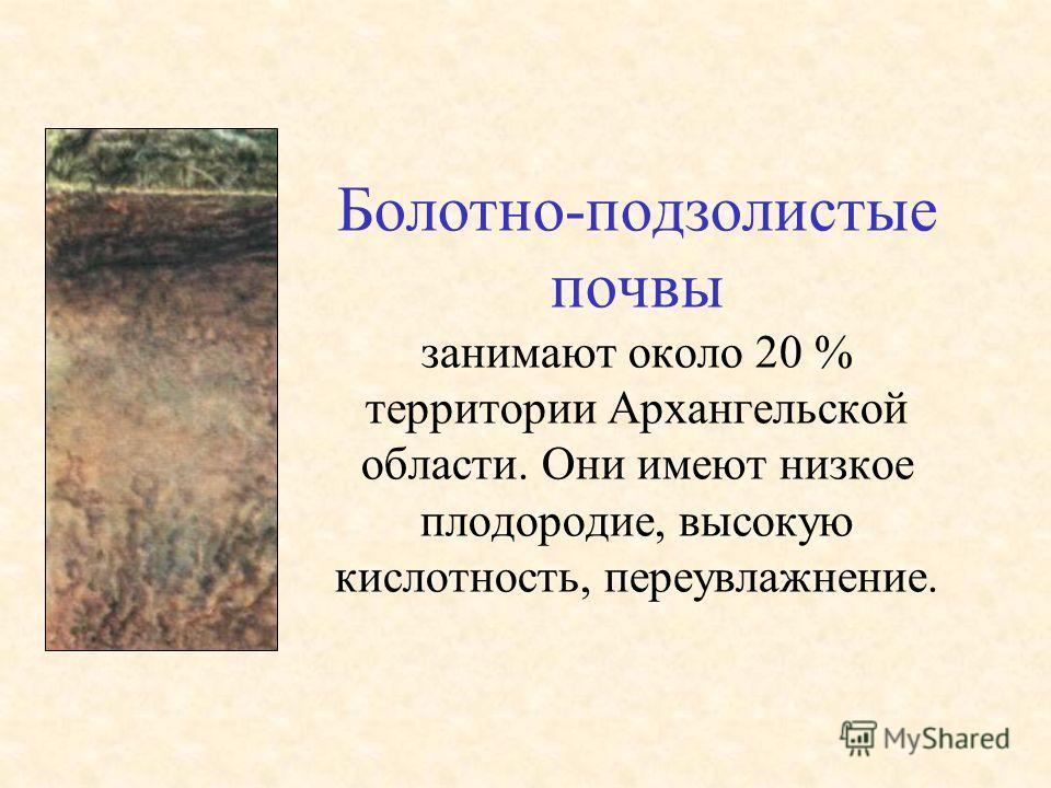 Болотно-подзолистые почвы занимают около 20 % территории Архангельской области. Они имеют низкое плодородие, высокую кислотность, переувлажнение.