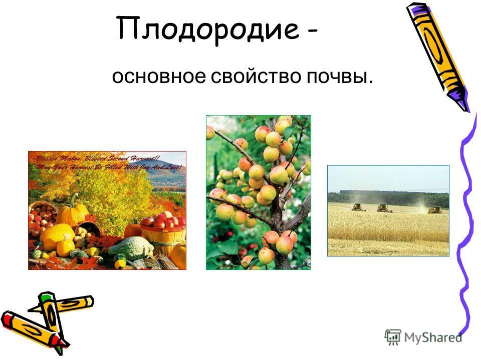 Плодородие - основное свойство почвы.