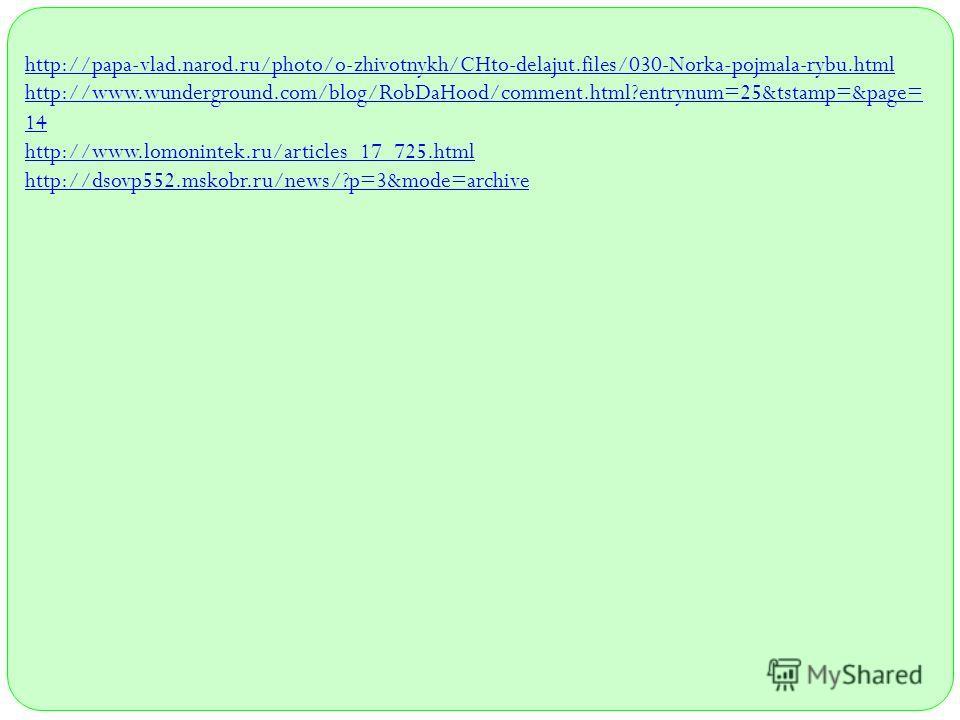 http://papa-vlad.narod.ru/photo/o-zhivotnykh/CHto-delajut.files/030-Norka-pojmala-rybu.html http://www.wunderground.com/blog/RobDaHood/comment.html?entrynum=25&tstamp=&page= 14 http://www.lomonintek.ru/articles_17_725.html http://dsovp552.mskobr.ru/n