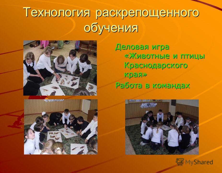 Технология раскрепощенного обучения Деловая игра «Животные и птицы Краснодарского края» Работа в командах