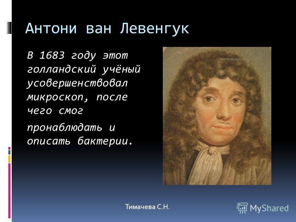 Антони ван Левенгук В 1683 году этот голландский учёный усовершенствовал микроскоп, после чего смог пронаблюдать и описать бактерии. Тимачева С.Н.