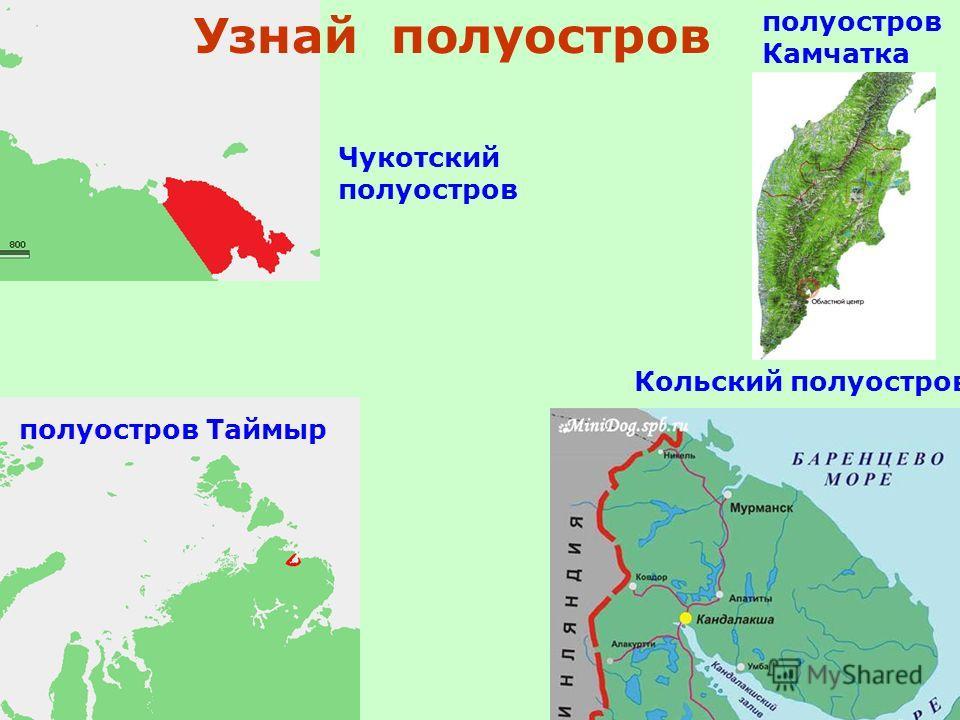 полуостров Камчатка Кольский полуостров полуостров Таймыр Узнай полуостров Чукотский полуостров