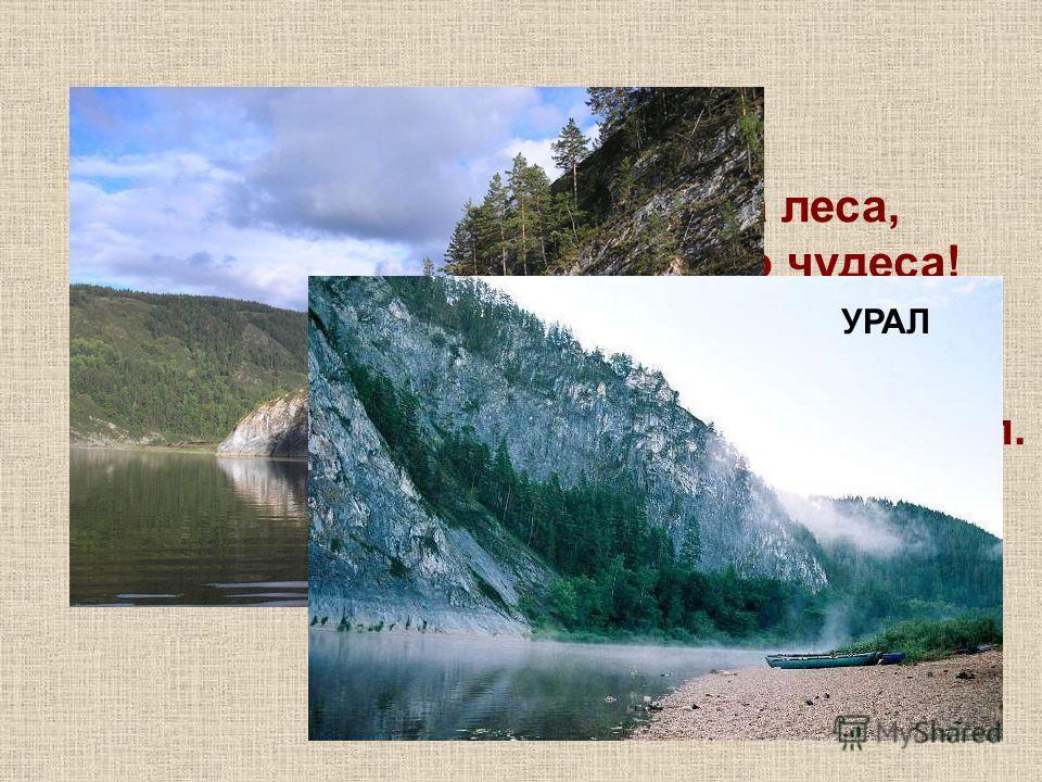 В дымке синеватой горы да леса, Что за край богатый, просто чудеса! Зелень изумрудная, глубина озер, А земля-то рудная, а кругом простор! Трав прибой пахучий у подножья скал. Ты такой могучий, наш седой … УРАЛ