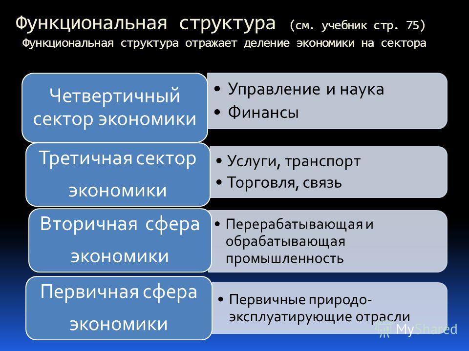 Функциональная структура (см. учебник стр. 75) Функциональная структура отражает деление экономики на сектора Услуги, транспорт Торговля, связь Третичная сектор экономики Перерабатывающая и обрабатывающая промышленность Вторичная сфера экономики Перв