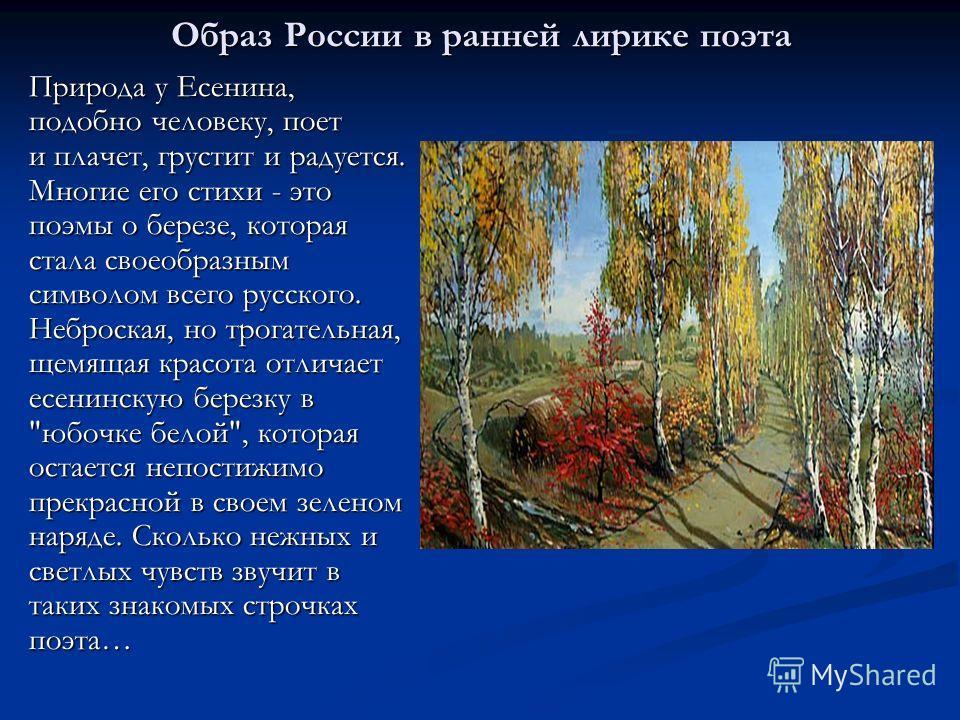 Образ России в ранней лирике поэта Природа у Есенина, подобно человеку, поет и плачет, грустит и радуется. Многие его стихи - это поэмы о березе, которая стала своеобразным символом всего русского. Неброская, но трогательная, щемящая красота отличает
