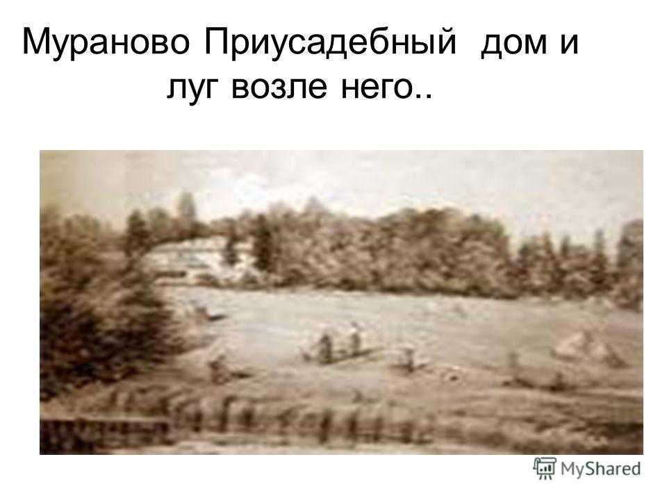 Мураново Приусадебный дом и луг возле него..