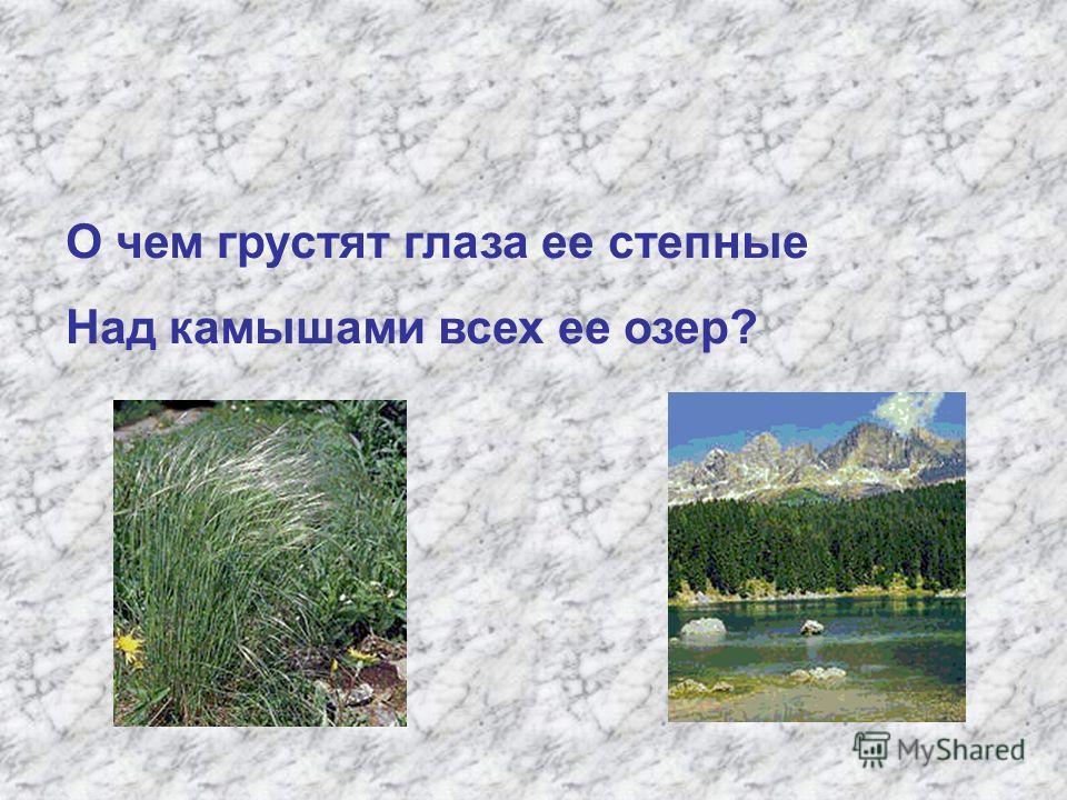 О чем грустят глаза ее степные Над камышами всех ее озер?