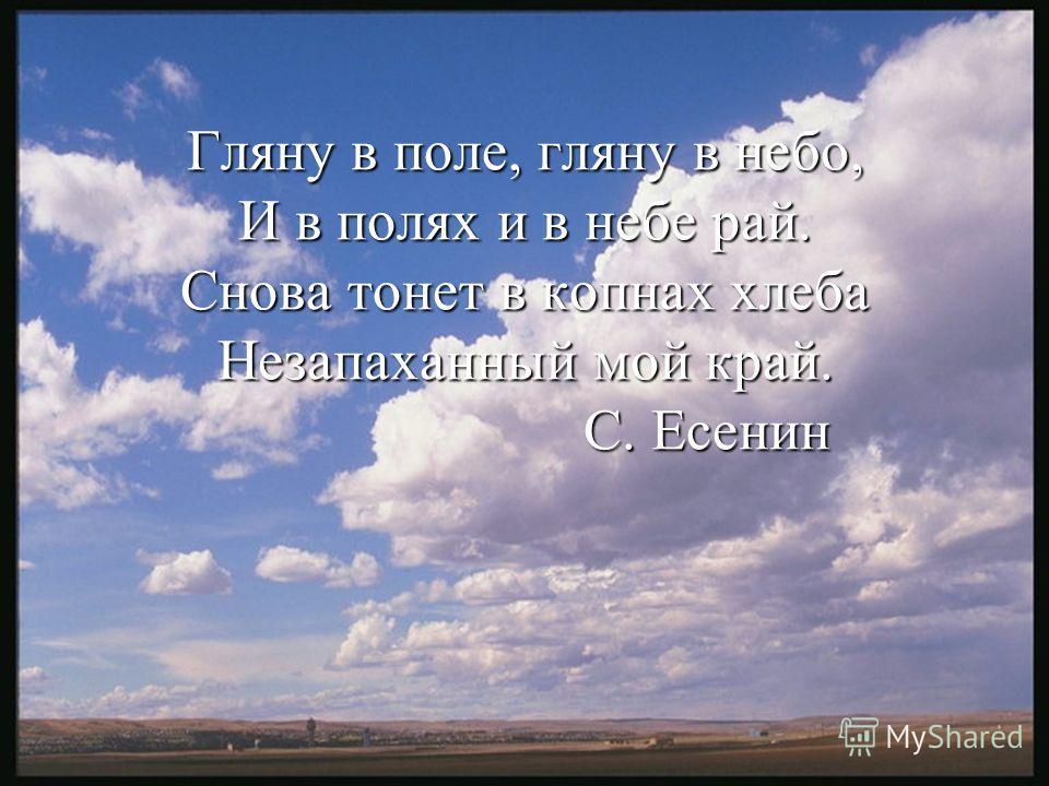 Есенин стих про поле