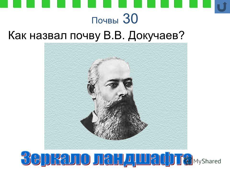 Почвы 30 Как назвал почву В.В. Докучаев?