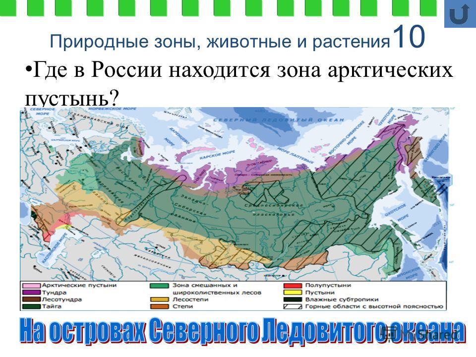 Природные зоны, животные и растения 10 Где в России находится зона арктических пустынь?