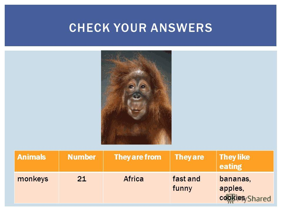 Animals Number They are from They areThey like eating monkeys 21 Africafast and funny bananas, apples, cookies CHECK YOUR ANSWERS