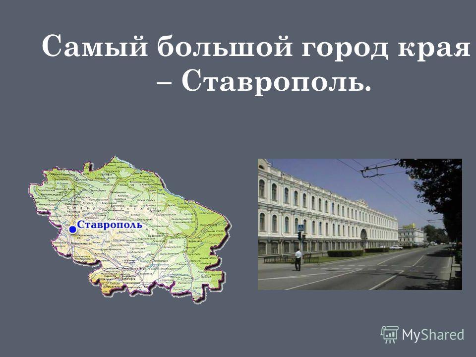 Самый большой город края – Ставрополь.