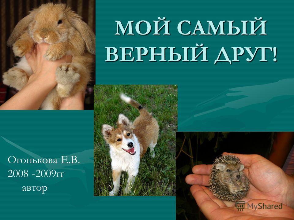 МОЙ САМЫЙ ВЕРНЫЙ ДРУГ! Огонькова Е.В. 2008 -2009гг автор