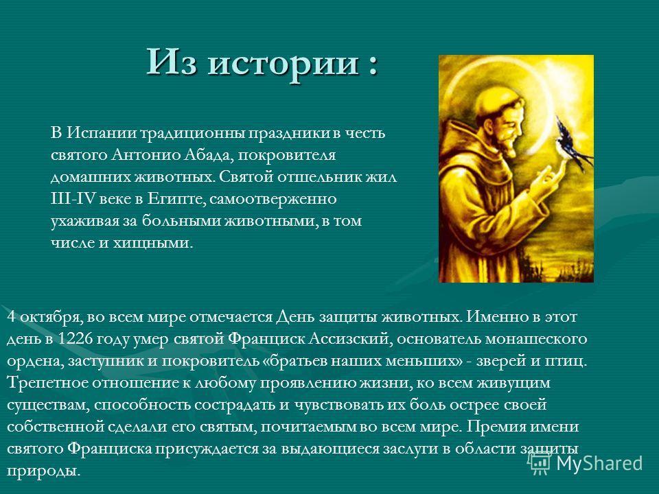 Из истории : В Испании традиционны праздники в честь святого Антонио Абада, покровителя домашних животных. Святой отшельник жил III-IV веке в Египте, самоотверженно ухаживая за больными животными, в том числе и хищными. 4 октября, во всем мире отмеча